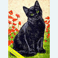 Black Kitty - Diamond Painting pakket - Wizardi Pakket met vierkante diamantjes