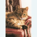 Relaxed Tabby by Rick Garland - borduurpakket met telpatroon Lanarte