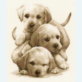 Labrador Puppies - kruissteekpakket met telpatroon Vervaco |  | Artikelnummer: vvc-148781