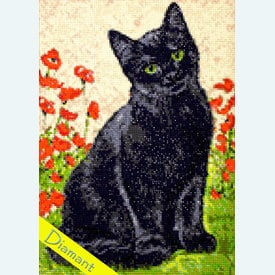 Black Kitty - Diamond Painting pakket - Wizardi | Pakket met vierkante diamantjes | Artikelnummer: wiz-wd208