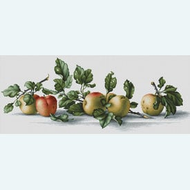 Apples - borduurpakket met telpatroon Luca-S |  | Artikelnummer: luca-b2265
