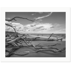 Hunting Island Beach | Hunting Island State Park, Beaufort, South Carolina,. USA, 2018 | Edition Print 24   unlimitiert | Bildnummer: X1d_180910_089bw-24