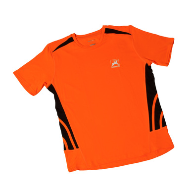 Herren-Sportshirt, orange |  | Artikelnummer: ML415